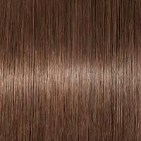 20cm-55cm Extension Capelli Naturali con Clip 100% Remy Human Hair Capelli Veri Tessitura con Fermagli Full Head Parrucca Vera (20cm-65g, 4 Marrone Cioccolato)
